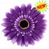 Цветочек Micro purple